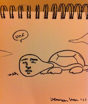 One of Veronica's stupid turtle sketches